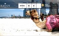 迪拜最佳酒店公寓在线预订:Savoy迪拜