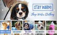 美国最大的宠物服装网站:BaxterBoo
