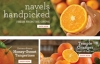 佛罗里达州印第安河新鲜水果:Hale Groves