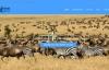 肯尼亚旅游公司:Dancom Tours