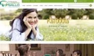 意大利在线药房:Farmacia Loreto Gallo