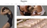 法国一家芭蕾舞鞋公司:Repetto
