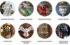 美国花园雕像和家居装饰网上商店:Design Toscano
