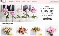 纽约和芝加哥当天送花:Ode à la Rose