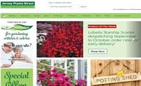 英国泽西岛植物:Jersey Plants Direct
