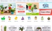 印度最大的在线苗圃:NurseryLive